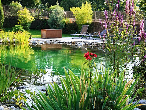location gite aix les bains savoie avec piscine la jument verte. Black Bedroom Furniture Sets. Home Design Ideas