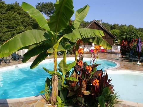 Location gite landes l on avec piscine lac de l on courant d 39 huchet - Gite dans les landes avec piscine ...