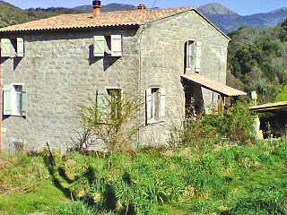 locations vacances Bed and breakfast Corse-du-Sud Countryside à FORCIOLO